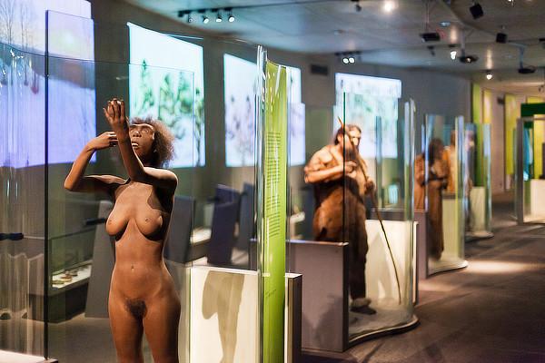 Günter Zamp Kelp, Julius Krauss, Arno Brandlhuber, Neanderthal Museum, Mettmann, North-Rhine-Westphalia, Germany