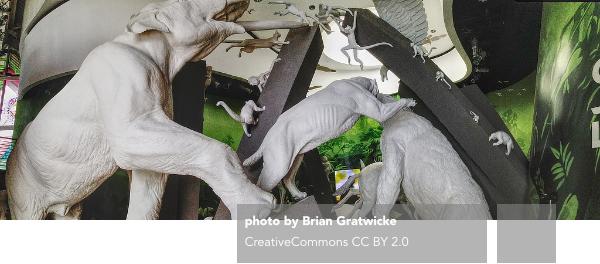 Frank O. Gehry, Biomuseo, Panama City, Edwina von Gal, Bruce Mau Design, O.M. Ramirez Y Asociados, Ensitu