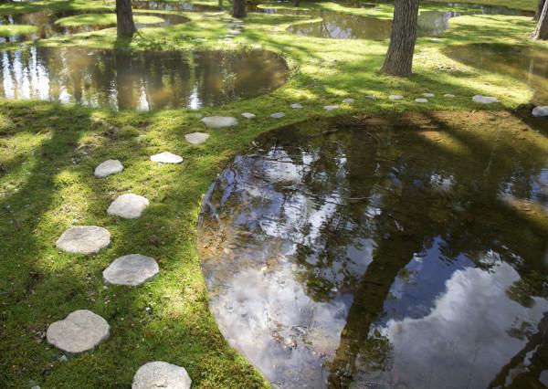 junya.ishigami+associates, Water Garden, Botanical Farm Garden, Art Biotop, Nasu, Tochigi, Japan